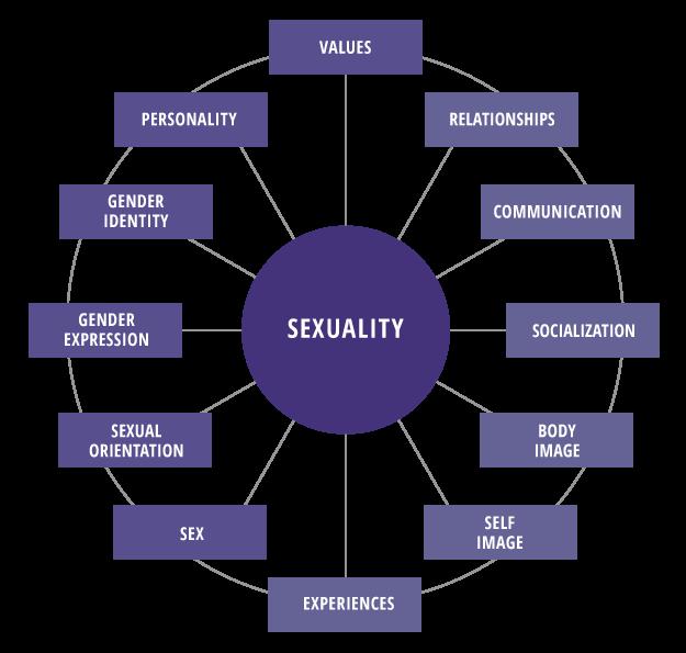 Sexuality Wheel