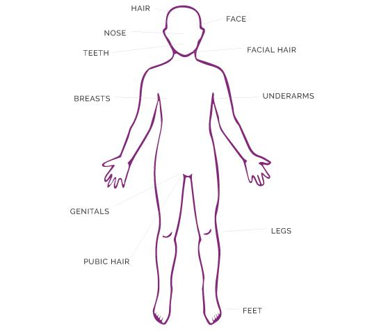 Hygiene Diagram